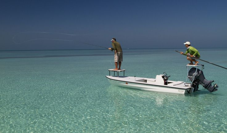 1000 images about saltwater fly fishing on pinterest for Salt water fly fishing
