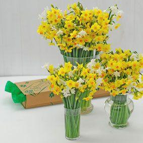 Easy Flower Arrangements 52 best easy flower arrangements images on pinterest | flower