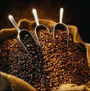 Coffee makes my world go around.
