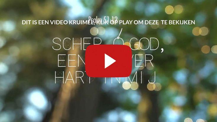 Schep, o God, een zuiver hart in mij, vernieuw mijn geest, maak mij standvastig. Psalm 51:12  #Geest, #God, #Hart  http://www.dagelijksebroodkruimels.nl/psalm-51-12/