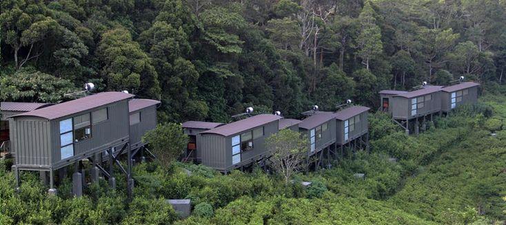 The Rainforest Ecolodge - Sri Lanka