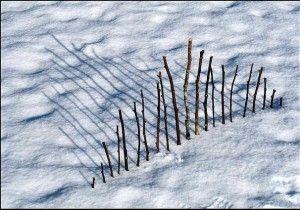Meten in de sneeuw.   twijgjes prikken van kort naar lang.  twigs