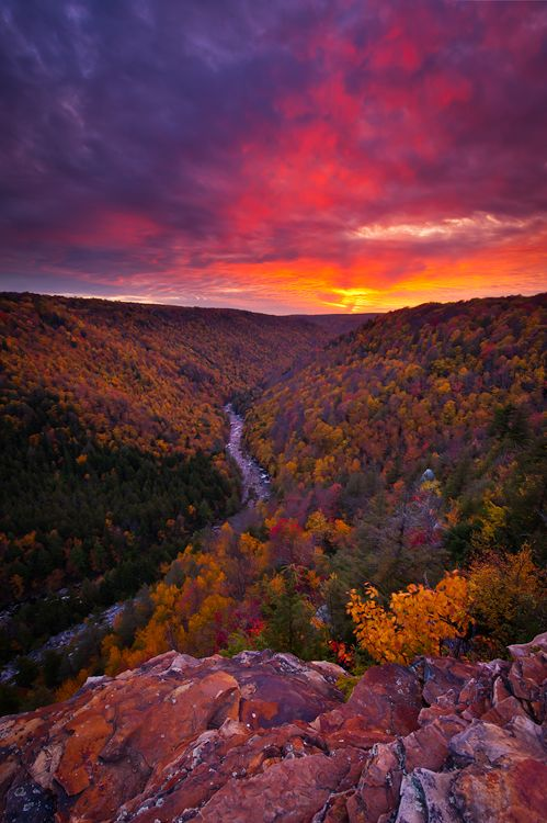 A little further south along the east coast you can find the Appalachian Trail and this gorgeous camping area for taking in fall and all it's splendor.   Blackwater Canyon, West Virginia