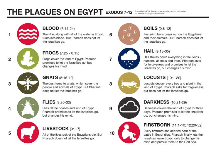 A look at how the ten plagues that were pronounced upon Egypt by the Lord, through Moses his prophet, correspond with the ten popular Egyptian Gods of the time. Description from thefemalecelebrity.com. I searched for this on bing.com/images