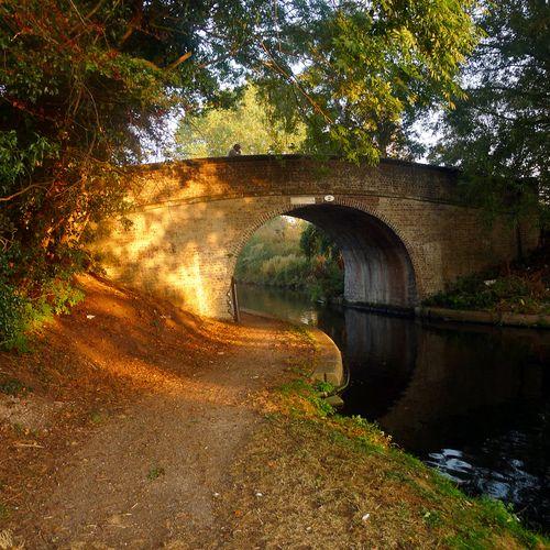 Wolverhampton, England (by Anne J.)