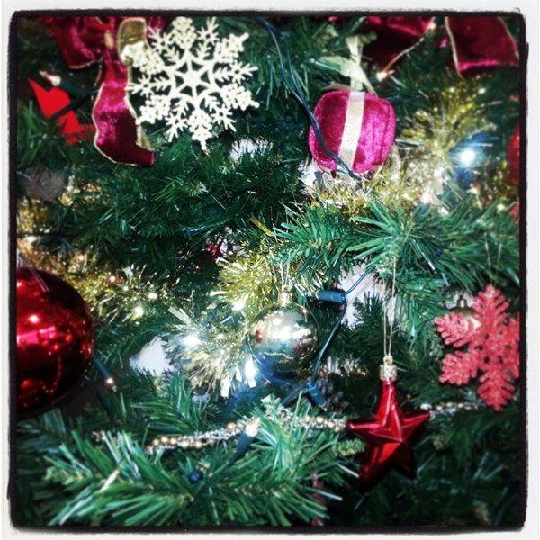 Christmas Season !