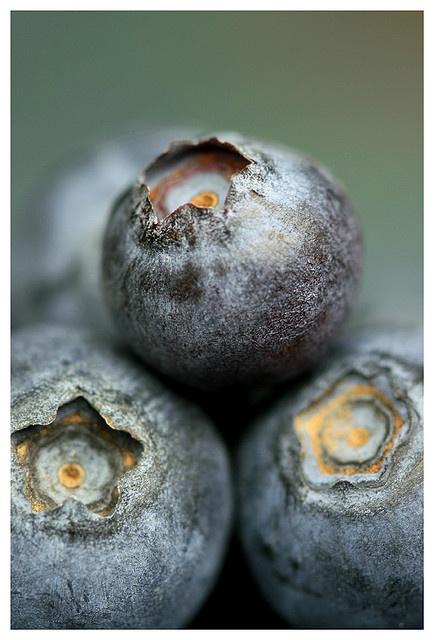 Blueberries - bunlara hiç bu kadar yakından bakmış mıydın?