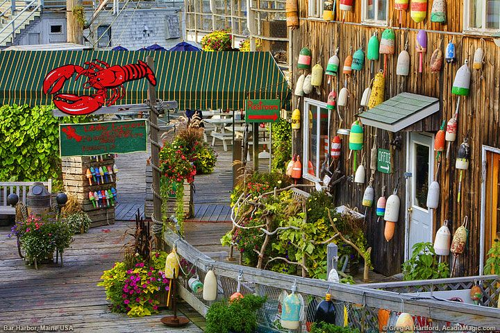 Bar harbor maine this shows the shoreside ambiance and for Food bar harbor me