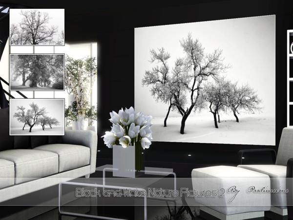 Pralinesims black and white nature pictures 2 · sims 3