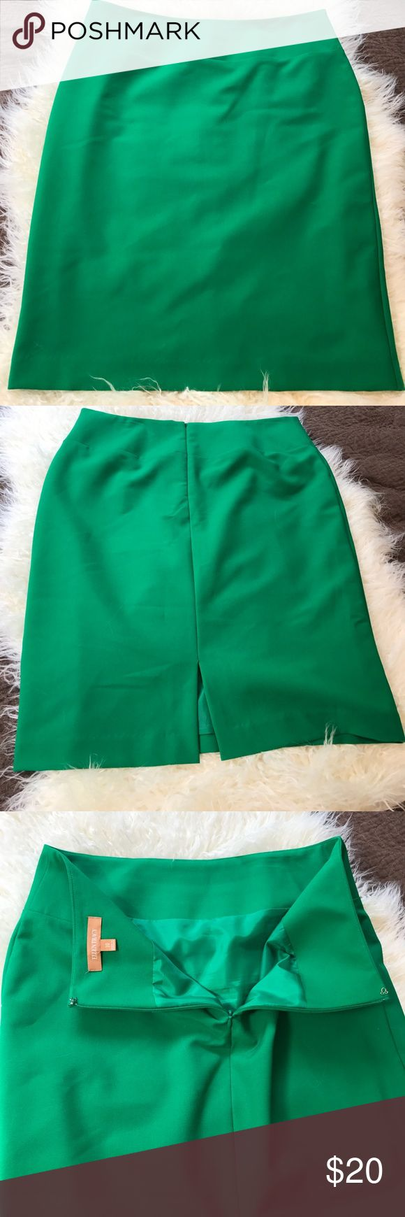 "Kelly Green Pencil Skirt Zip Lined Slit Classic 10 34"" waist 40"" hip 22.5"" length. Non smoker Ellen Tracy Skirts Pencil"