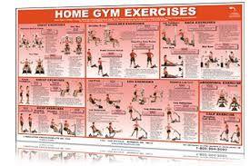 Résultats de recherche d'images pour «home gym exercises»