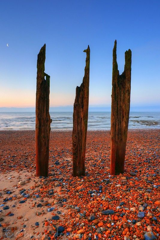 17 Best Images About Sussex Coast On Pinterest