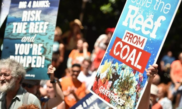 Great Barrier Reef lobbying: Australian government offers junkets to journalists  Abbott government steps up its efforts to keep the reef from being listed as in danger by inviting reporters from Unesco countries on all-expenses paid visit