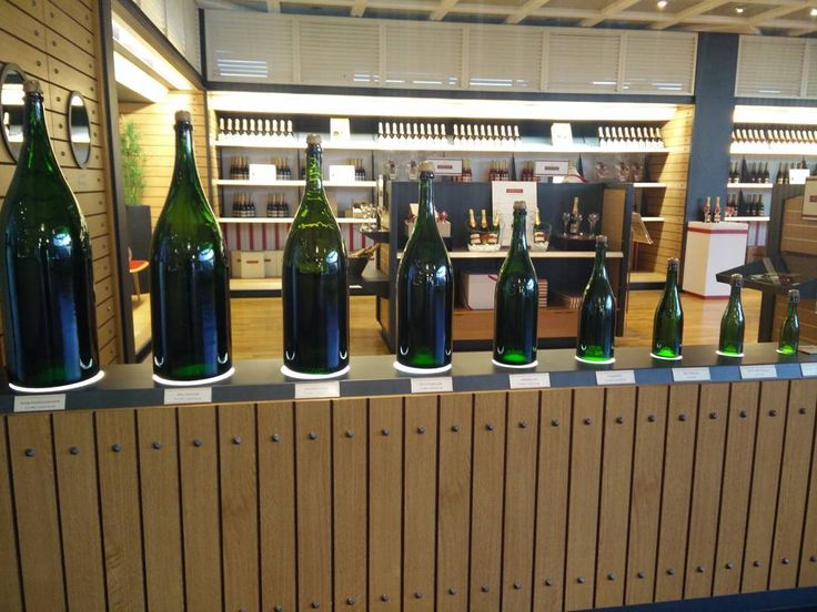 Who said size doesn't matter?? Which one would you prefer?      #2europeans #france #epernay #europe #vineyard #champagne #bottles #size #mercier #views #nature #naturephotography #amazingpic #hashtag #goals #instagram #picture #nofilter #moments #lifestyle #travelphotography #travelgram #traveltheworld #trip #travelling #travel #world #worldtraveler #instalike #instagood