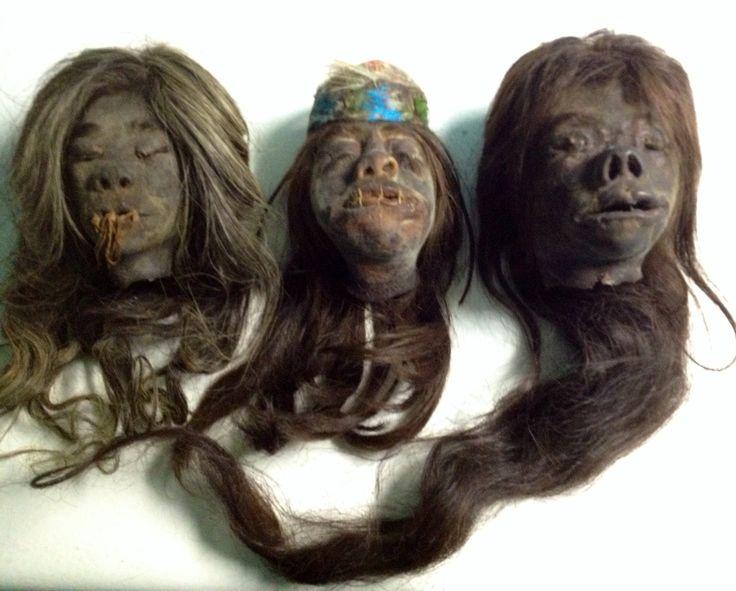 Genuine Human Shrunken Heads For Sale!! Info@RealShrunkenHeads.com https://www.facebook.com/RealShrunkenHeads/ https://twitter.com/OdditiesWorld www.RealShrunkenHeads.com www.Human-Oddities.com