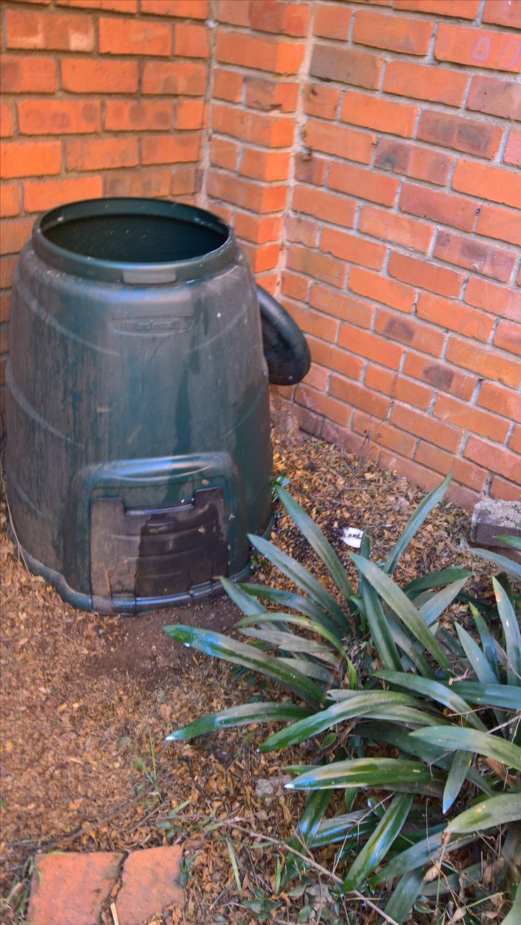 Bee removal in Johannesburg in bees in a composter