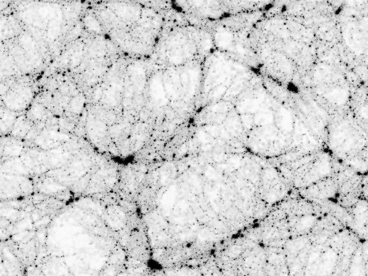 Dark Matter Universe; Virgo Consortium