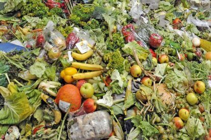 5 Ways We Can Stop Food Waste