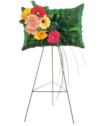 ' Gerbera Pillow' - Voted Best Florist In San Diego | San Diego CA Flowers | Same Day Flower Delivery