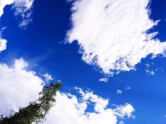 """""""Проститееее! Нет времени выкладывать фото😔 Через дней 5 всёё будет 😌👌🏻🌻😍 . . . . . . . . . #summer #nature #instaaltay #instaaltai #instaaltay #altai #горы #алтай #природа #красота #поход #туризм #алтайтур #лето #горныйалтай #РеспубликаАлтай #beauty #AltaiRepublic #tourism #activetourism #themountains #mountains #snow #снег #счастье #happiness #relaxation #гармония #harmony #travels #travelblogger"""" by @lidushka_ch. #pic #picture #photos #photograph #foto #pictures #fotografia #color…"""
