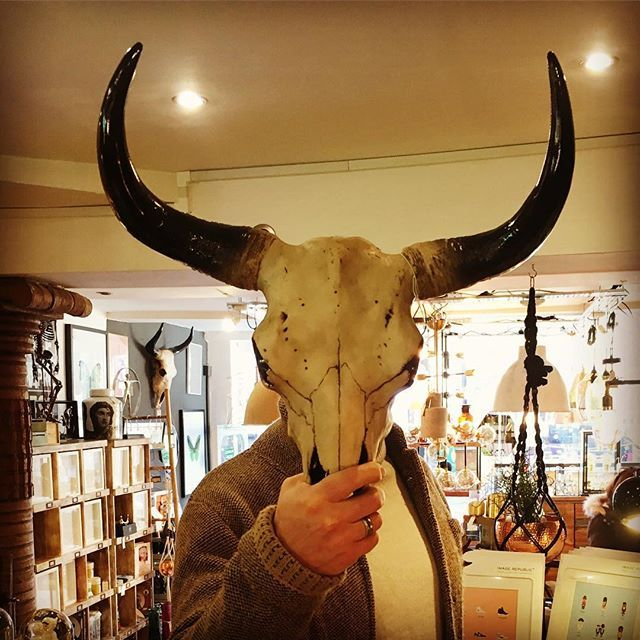 Me as the bison. Wall Mounted Bison Skull isn't of course constructed from the real thing since our suppliers in the wild west are still waiting for the railroad - but its horny appearance will be sure to add a little impact to your interior of choice.