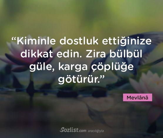 """""""Kiminle dostluk ettiğinize dikkat edin. Zira bülbül güle, karga çöplüğe götürür."""" #mevlana #celaleddini #rumi #sözleri #yazar #şair #kitap #şiir #özlü #anlamlı #sözler"""