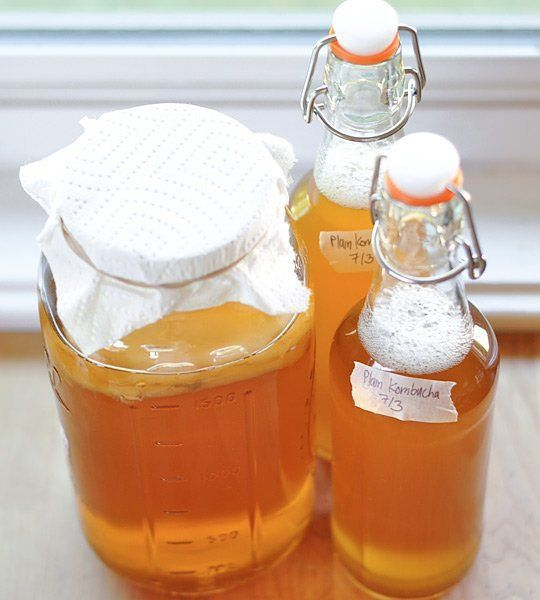 Make Your Own Kombucha -- Fermented foods taste amazing and are fabulous for your health! Try these great ideas to get your inspired! A great new years resolution!