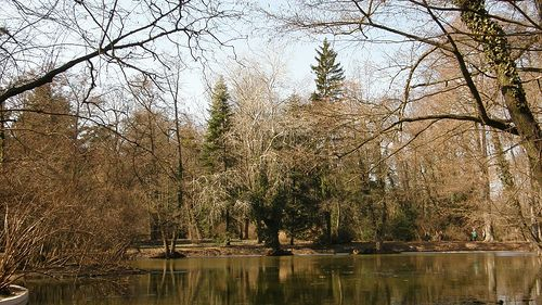 Alcsúti Arborétum, Alcsútdoboz, Hungary