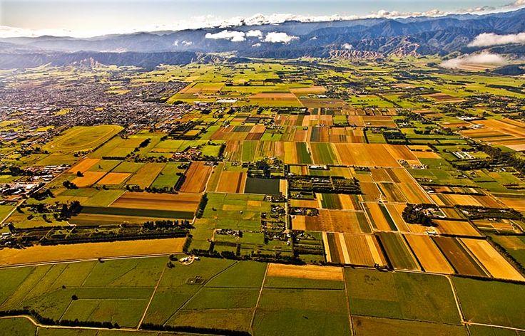 Levin, market garden of NZ, see more at New Zealand Journeys app for iPad www.gopix.co.nz