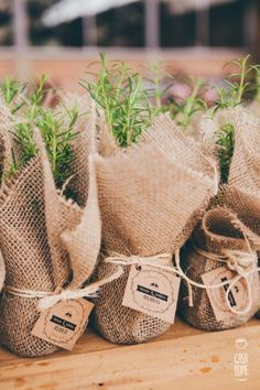 Casamento no campo cheio de amor – Fabíola e Thiago