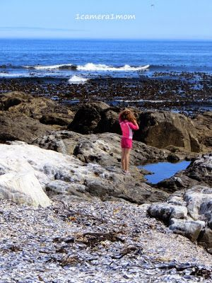1camera1mom: the West Coast, Britannia Bay and Shelley Point, South Africa #photography #travel #sea