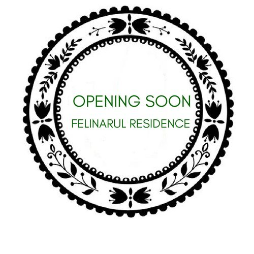 Getting excited @ Felinarul Residence