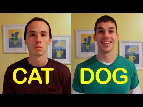 Cat-Friend vs Dog-Friend --Love it!
