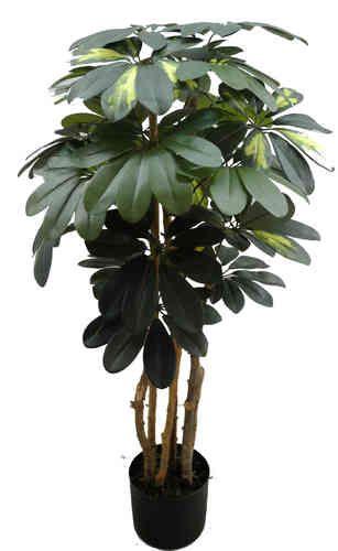 Schefflera 90cm grün / grün-gelb DA künstlicher Baum Kunstbaum Kunstpflanzen künstliche Pflanze