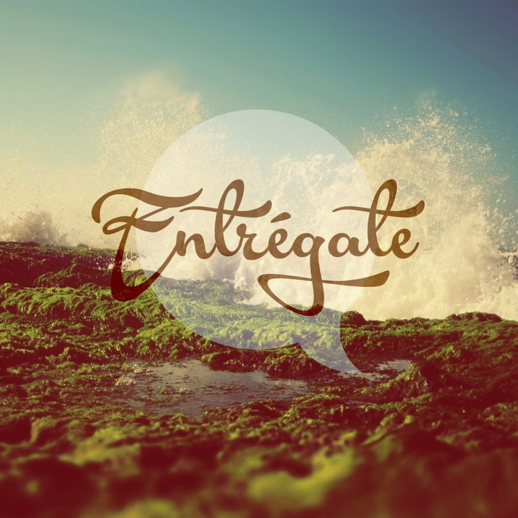 Entrégate by:Julieth Campillo #typography #phrases #nature