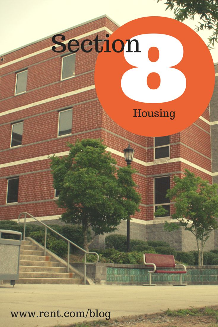 Heard of Section 8 housing but not sure what it is? Here's a crash course on the basics of this housing assistance program. Read now on The Shared Wall!
