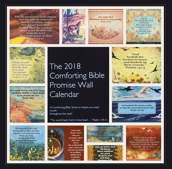 """The 2018 Comforting Bible Promise Wall Calendar Designed & Illustrated by Suzanne Davis Harden  The 2018 Comforting Bible Promise Wall Calendar © Suzanne Davis Harden All Rights Reserved.  The Psalmist wrote in Psalm 119:11 """"Thy word have I hid in my heart that I migh... #calendars"""