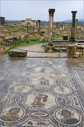 A Passage to Tangier: The World Heritage Site of Volubilis