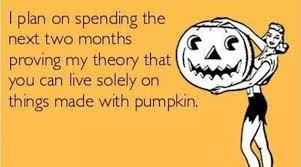 pumpkin meme
