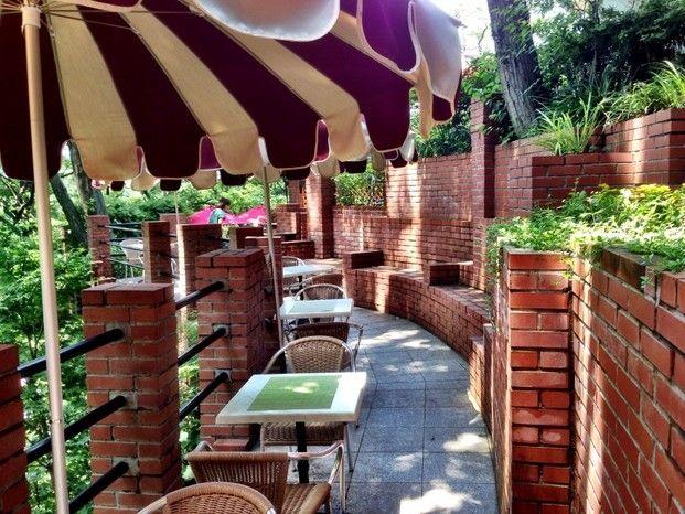 まるでラピュタの世界!天空のカフェ「樹ガーデン」で癒しを - Locari(ロカリ)
