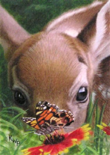 Fawn and butterfly enjoying the flowers • artist: Kelley Patterson