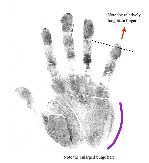 storyteller hand shape, online hand analysis classes, hand shape archetypes with Richard Unger of International Institute of Hand Analysis