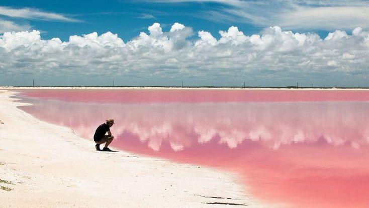 A lagoa de Las Coloradas, no México, tem as águas cor-de-rosa. O fenómeno é de…