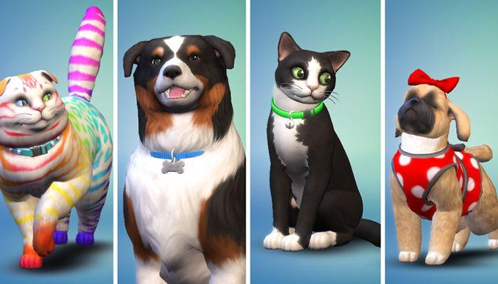 Pin Auf Sims 4