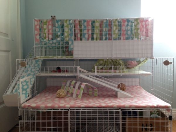 I like the ramp being pushed to outside the cage.  And those colors are too cute!