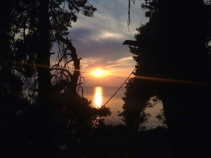 Παραλία Δάφνη: Το πιο δυνατό χαρτί στην περιοχή των Ψαχνών
