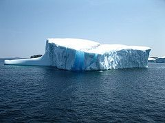 Iceberg in Twillingate