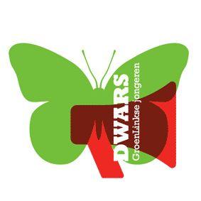 2010 - 2011: Politiek actief als secretaris bij DWARS GroenLinkse jongeren in Leeuwarden