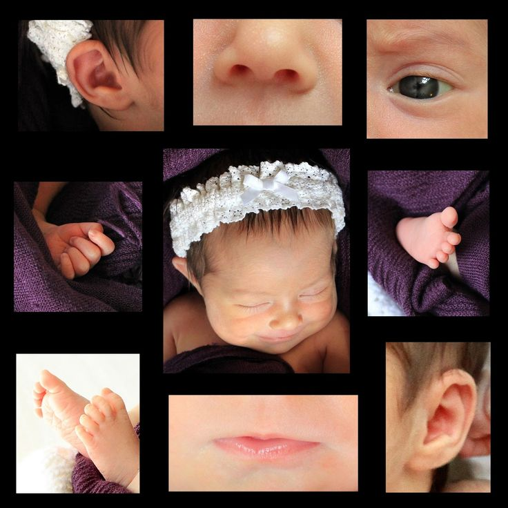 Katie Bertoli Photography tiny features newborn baby photo collage Katie Bertoli Photography tiny features newborn baby photo collage Katie Bertoli Photography tiny features newborn baby photo collage