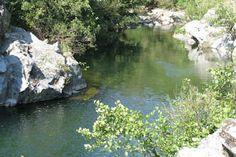 Camping la carconne - leuke camping aan riviertje  En in bos - beetje hippieachtig- via vrienden